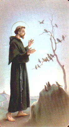 a biography of saint francis of assisi a catholic saint St francis of assisi, patron saint of animals, is one of the world's most popular saints believers say that god has performed many miracles through saint francis because of his great faith.